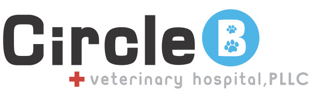 Circle B Veterinary Hospital